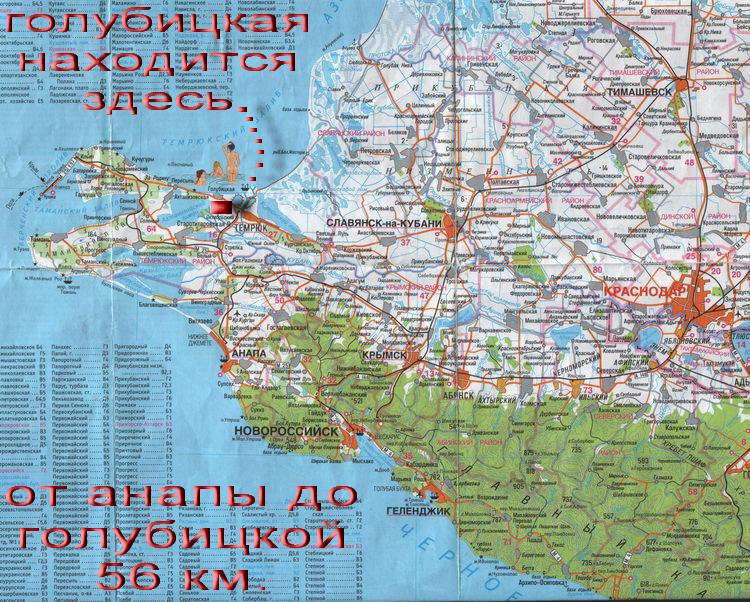 Голубицкая- Карта, Схема